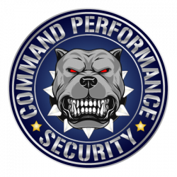 Command Performance Security